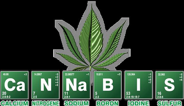 cannabis-2305146_640